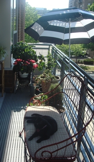 otdih_na_balkone_6