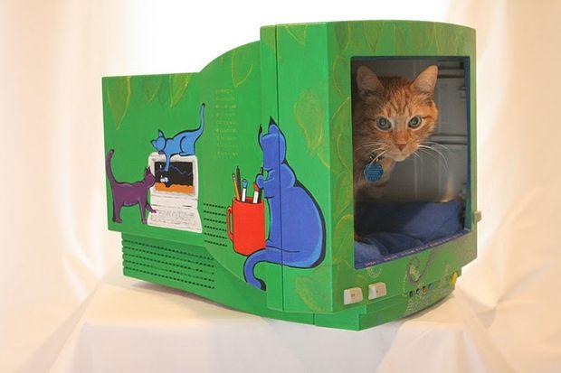 Как сделать уютный домик для котёнка