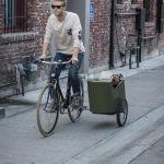 Велосипедная коляска для собаки